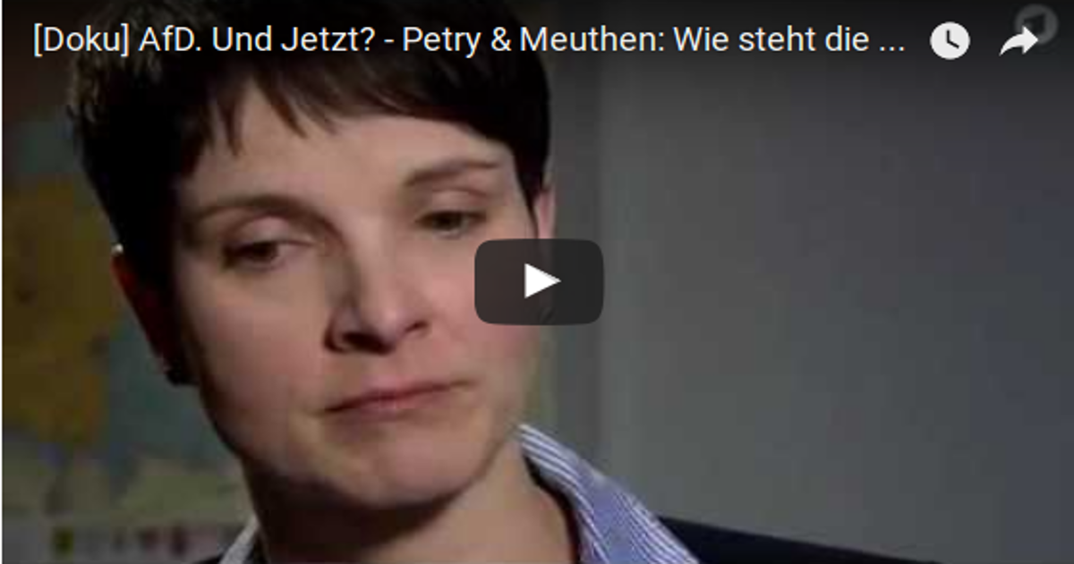 AfD-Doku: Petry schaut beim Rechtsruck weg